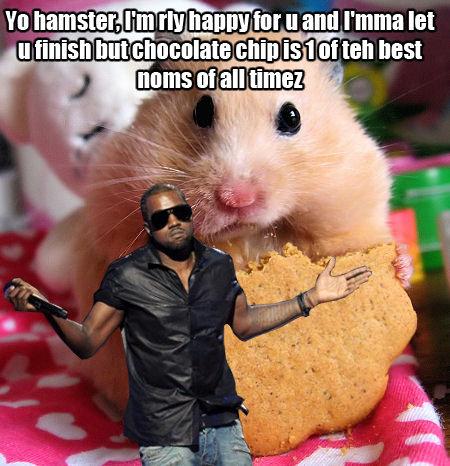 kanye hamster nom