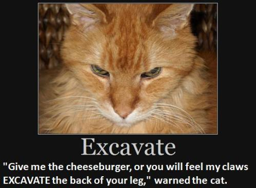 """Give me the cheeseburger or you will feel my claws excavate the back of your leg,"" warned the cat."