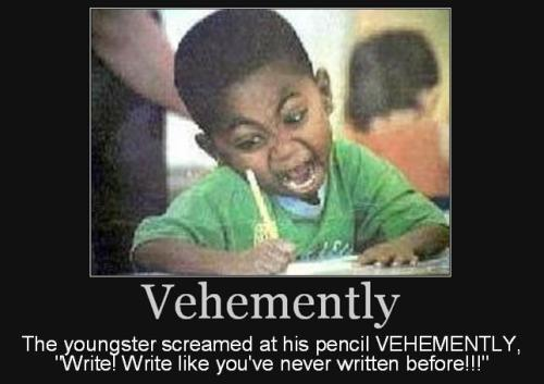 using VEHEMENTLY in a sentence