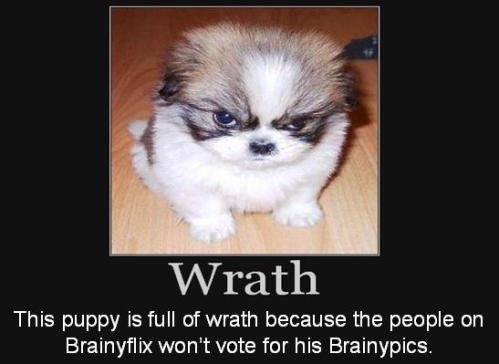 This puppy is full of wrath because the people on Brainyflix won't vote for his Brainypics.