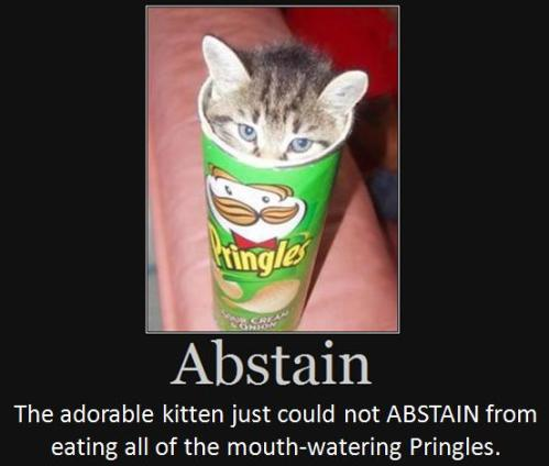 The adorable kitten just could not abstain from eating all of the mouth- watering Pringles.
