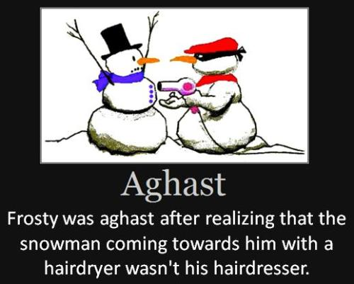 Frosty was aghast after realizing that the snowman coming towards him with a hairdryer wasn't his hairdresser.